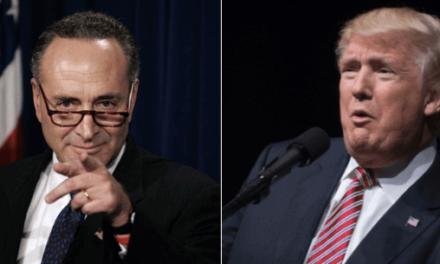 Sen. Schumer Challenges Trump to Swap Putin Stories