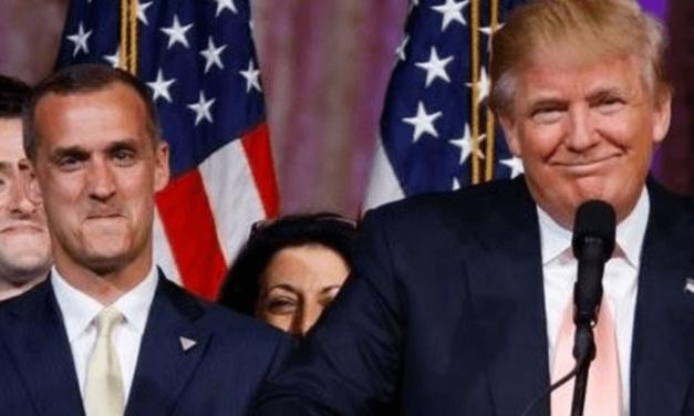 Trump Buddies Are Making Millions As Washington Lobbyists: Report