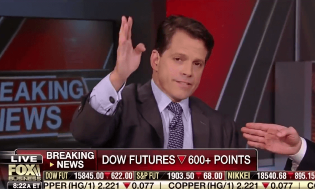 This Is How Donald Trump's New Communications Director Used To Talk About Him (Video)